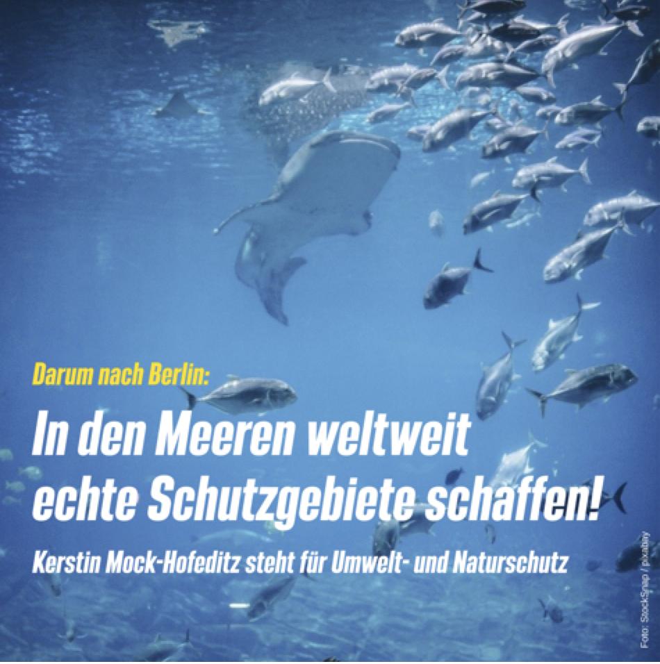 Wir brauchen echte Meeresschutzgebiete