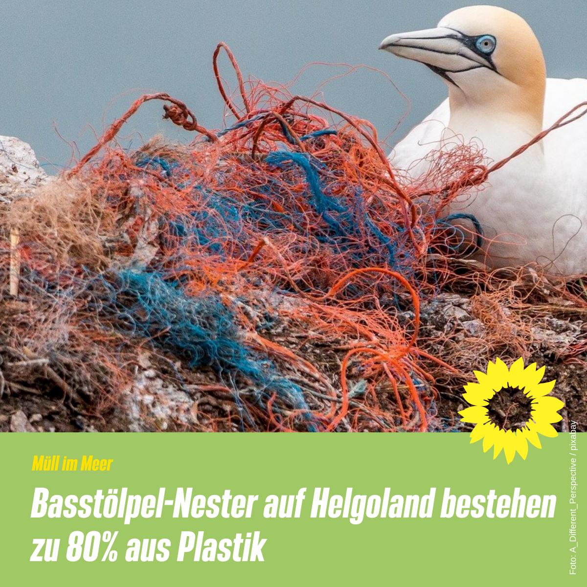Plastik im Meer – ein Riesenproblem
