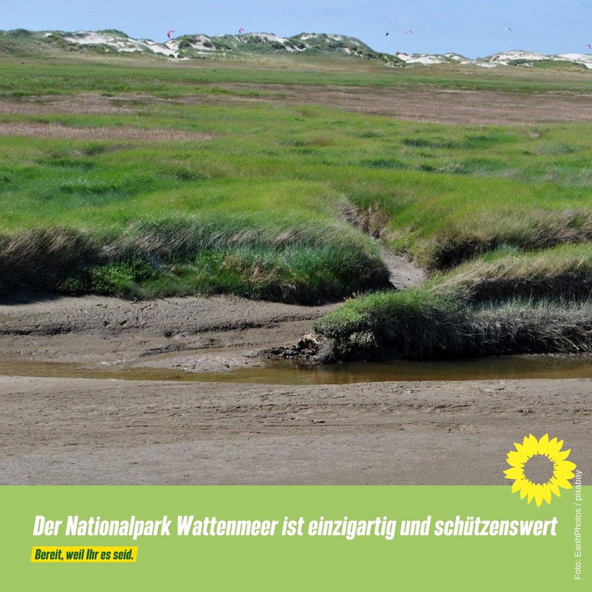 Nationalpark und Salzwiesen schützen